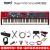 Nord Nord Node電気ピアノPiano 3 Electro HPフルセット重電ピアノLED A 1キーボードアナログシンセサイザーStage 3 NS 3-73キーシンセサイザー